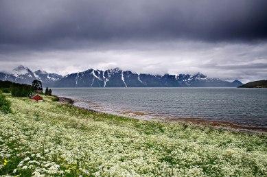 I fiordi del Troms